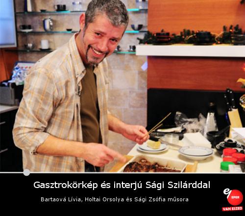 gasztrokorkep_bartaova_holtai_sagi_2015